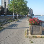 It's My Park Day! East River Esplanade Day!